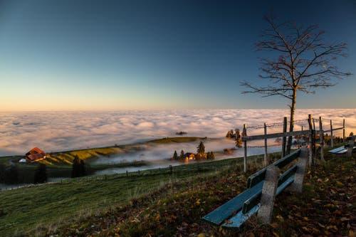 Blick aufs Nebelmeer vom Zugerberg. (Bild: Daniel Hegglin)