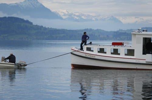 1. Mai: Die MS Schwan wird wieder im Zuger Hafen eingewässert. Sie war nach einem Unwetter im August 2013 gekentert und wurde danach aufwendig renoviert. (Bild: Stefan Kaiser / Neue ZZ)