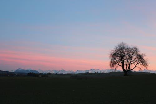 Abendstimmung über den verschneiten Bergen der Innerschweiz, von Rickenbach aus gesehen. (Bild: Josef Habermacher)