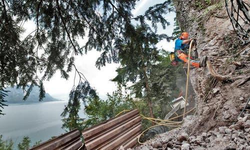 Die Spezialisten sind hoch über dem Vierwaldstättersee am Werk. (Bild: Boris Bürgisser / Neue LZ)