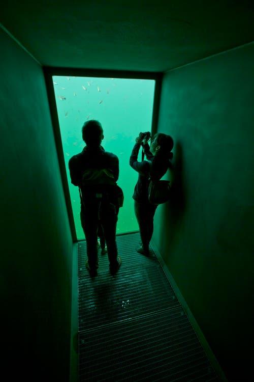 Erste Besucher nehmen einen Augenschein. (Bild: Stefan Kaiser / Neue ZZ)