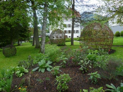 Kanton Obwalden: Installation eines «Herbariums der Sehnsucht» in Sachseln (Bild: Maria Josefa Lichtsteiner)