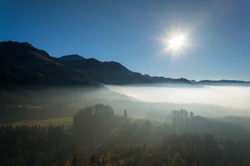 Knapp über der Nebelgrenze. Fotografiert im Eigenthal. (Bild: Christian Albisser)
