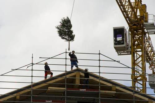Im Beisein der beteiligten Handwerker wurde am Freitag im Rahmen des Richtfests der Richtbaum auf den Giebel gehievt. (Bild: Keystone)