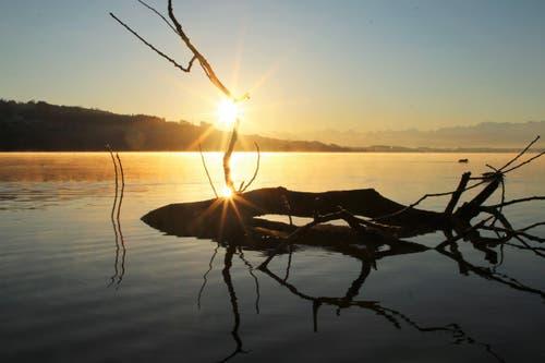 Am Sempachersee, wenn die Sonne hinter dem Hügel erscheint (Bild: Irene Wanner)