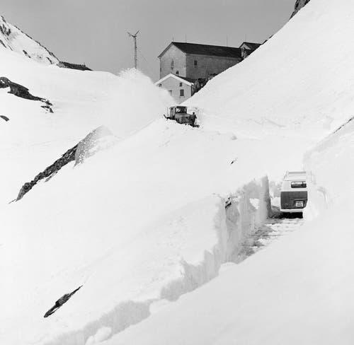 Schneeräumung mit einer Schneeschleuder am Grossen St. Bernhard-Pass, aufgenommen am 23. Mai 1960. (Bild: Keystone)