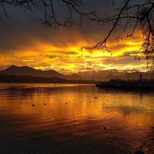 Morgenrot fotografiert auf dem Inseli in Luzern (Bild: Elias Meier)