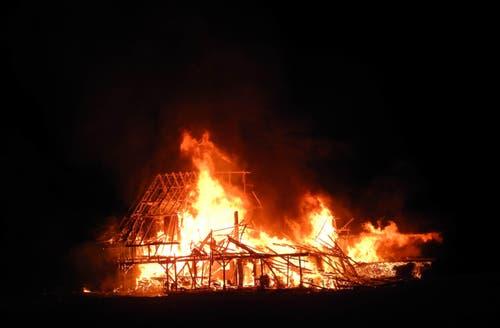 12. August: Beim Brand eines Stalles sterben in der Nacht auf Mittwoch in Arth 170 Schweine gestorben. Bereits zwei Tage zuvor brennt eine Scheune bis auf die Grundmauern nieder.