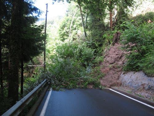 Die Strasse vom Hergiswald Richtung Obernau - hier gab es gemäss Leserreporterin Marlen Fässler am Montagabend 85 Liter Regen in rund zwei Stunden. (Bild: Leserreporterin Marlen Fässler)