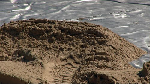 Die einzelnen Sandkörner sind 0,2 bis 0,65 Millimeter gross. (Bild: René Meier)