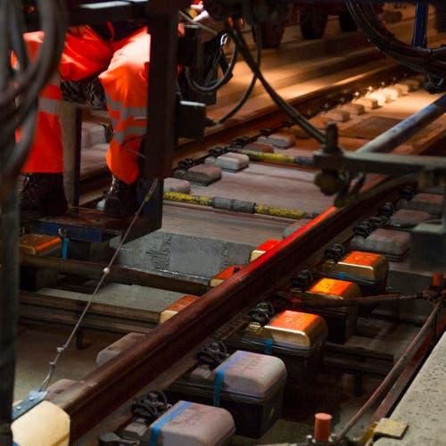 Die letzten der 380 000 Einzelblock-Schwellen im Gotthard Basistunnel sind Goldfarben und werden am Freitag, 31. Oktober 2014, bei Biasca in Beton eingegossen. (Bild: SIGI TISCHLER)