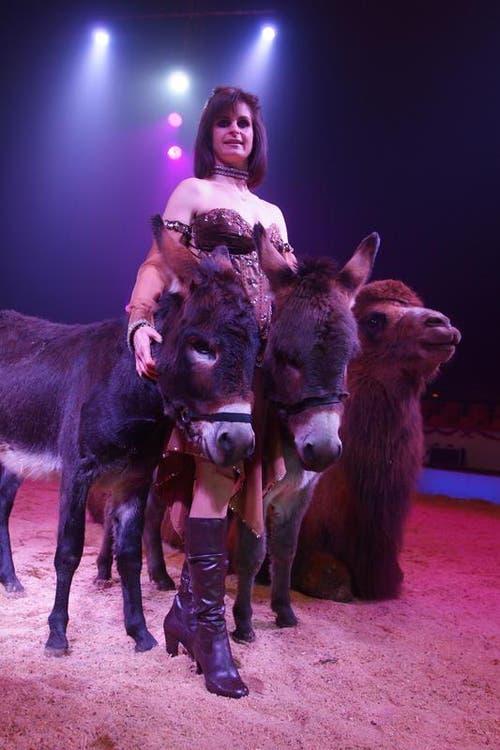 Franziska Nock (SUI): Die 7. Generation der Circus Dynastie Nock ist bekannt für ihre Tiernummern. Einerseits vermischt sie Grau- mit Trampeltier: Esel wirbeln in jugendlichem Elan durch die Manege und verknäueln sich unter und neben den stolzen Kamelen. (Bild: PD)