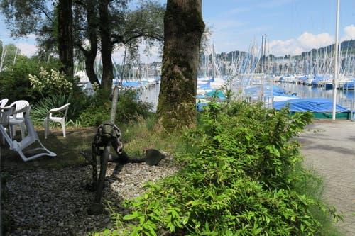 Ein Umgebungsbild von dem Ort, wo der Anker liegt. (Bild: Stefanie Nopper / Luzernerzeitung.ch)