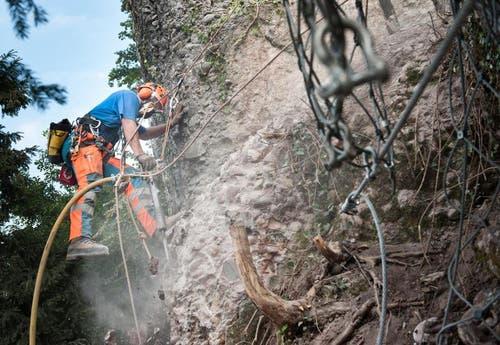 Hämmern der Presslufthammer oberhalb der Horlaui in Weggis. (Bild: Boris Bürgisser / Neue LZ)