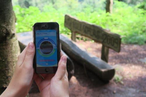 Je nach GPS-Signalstärke findet die App auch manchmal, man sei zu weit entfernt vom Pokéstop. Dies, obwohl man direkt davor steht. (Bild: Stefanie Nopper / Luzernerzeitung.ch)