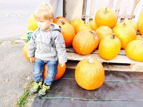 Ganz geheuer ist dem Kleinen Halloween wohl nicht (Bild: Leser / Stephan Widmer)