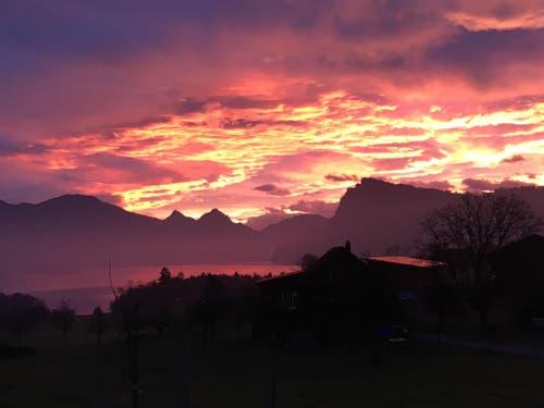 Sonnenaufgang über Horw. (Bild: Flurina Valsecchi)