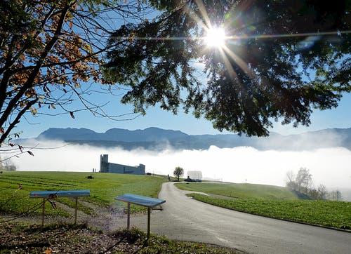 Herbstidylle an Allerheiligen mit Sonne und Nebel auf dem Steinhuserberg. Im Hintergrund sieht man die Pilatuskette. (Bild: Josef Lustenberger)