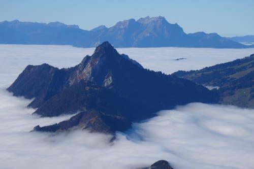 Glücklich, wer wie wir auf dem Grossen Mythen, dem Nebel entfliehen konnte. Blick auf Rigi Hochflue und Pilatus (Bild: Peter Schnellmann)