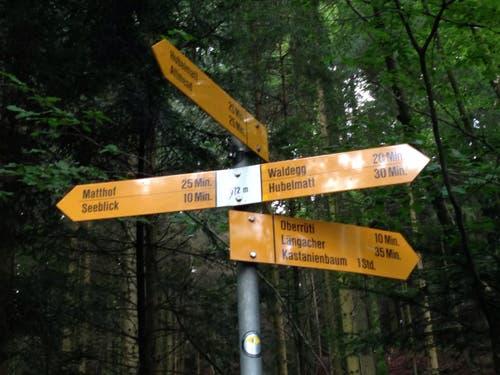 Ein Schilderwald... Wo bitte gehts lang? Der Wald ist recht verwirrlich... (Bild: Stefanie Nopper / Luzernerzeitung.ch)