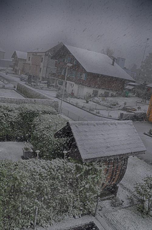 Wildes Schneetreiben in Beckenried. (Bild: Leserin Regula Aeppli)