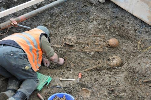 Während der Grabung: Vorsichtig werden die Skelette freigelegt. (Bild: Philipp Unterschütz)