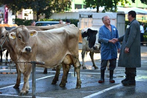 Der Bauer Birrer Walter feilscht mit dem intressierten Käufer Kaspar Boog um den Preis seiner Kuh. (Bild: Nadia Schärli / Neue LZ)