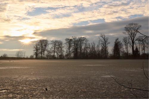 Sonnenuntergang beim Steinibühlweiher. (Bild: Xaver Husmann)