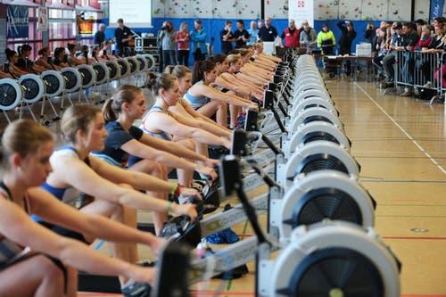 26.01.2013: Hunderte Athleten messen sich an der 25. Swiss Rowing Indoors Meisterschaft in der Kantonsschule Zug. (Bild: Roger Zbinden / Neue LZ)