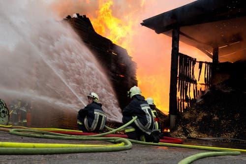 Das Löschen der brennenden Holzbeigen war ein schwieriges Unterfangen. (Bild: Dominik Wunderli / Neue LZ)