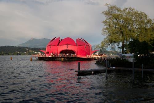 Die Gästival Seerose im Abendlicht beim Luzerner Inseli. (Bild: Manuela Jans (Neue LZ))