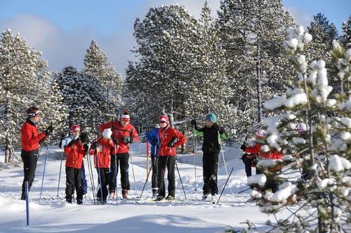 Langlauf-Instruktion in der herrlichen Schneelandschaft im Langis. (Bild: Robert Hess / Neue OZ)