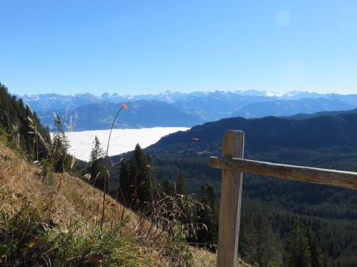 Wunderbare Aussicht von der Tripolihütte auf die Innerschweizer-Alpen mit dem Nebelmeer im Tal. (Bild: Gut Dorothe)