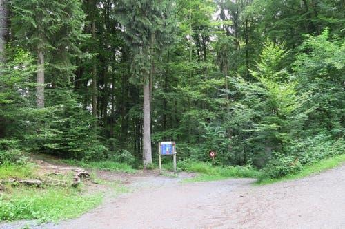 Von dort aus geht es zu Fuss weiter zum Bireggwald. (Bild: Stefanie Nopper / Luzernerzeitung.ch)
