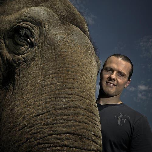 Franco Knie junior mit seinem Elefant. (Bild: Pius Amrein / Neue LZ)
