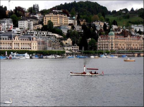 Auch ein Mini-Dampferli tummelt sich im Luzerner Seebecken. (Bild: Leserbild: Sepp Bernasconi)