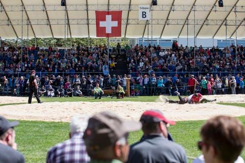 Das 98. Zuger Kantonale Schwingfest am Sonntag, 30. April 2017, in Baar. (KEYSTONE/Alexandra Wey) (Bild: Alexandra Wey / Keystone (Baar, 30. April 2017))