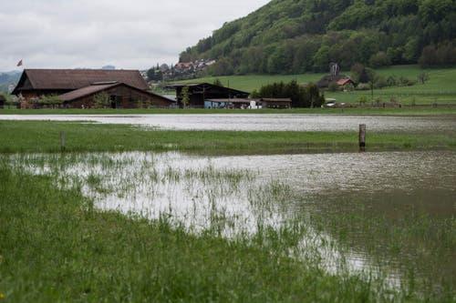 Überschwemmtes Kulturland in Toffen im Gürbetal. (Bild: Keystone)
