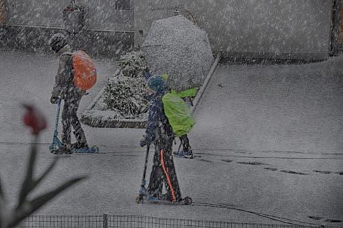 Schulkinder in Beckenried auf ihrem Weg durch den Schnee (Bild: Leserin Regula Aeppli)