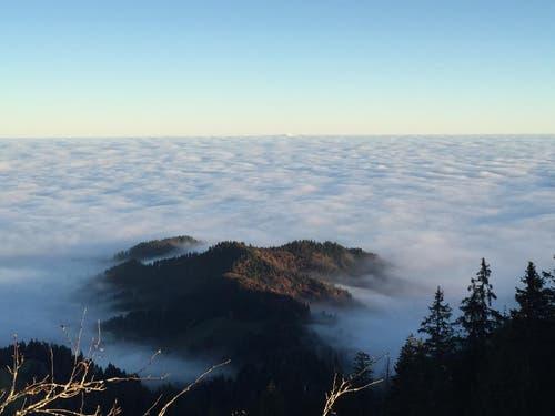 Aussicht vom Napf über das Luthertal, jedoch wird es von der Nebeldecke versteckt. (Bild: Kaufmann Isabelle)
