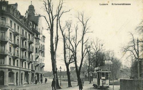 Obergrundquartier mit Krienserstrasse, 1906 (Bild: PD)