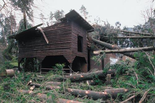 Orkan Lothar zerstörte im Dezember 1999 im Tierpark nicht nur viele Gehege, sondern auch 80 Prozent der Bäume. (Bild: pd / Tierpark Goldau)