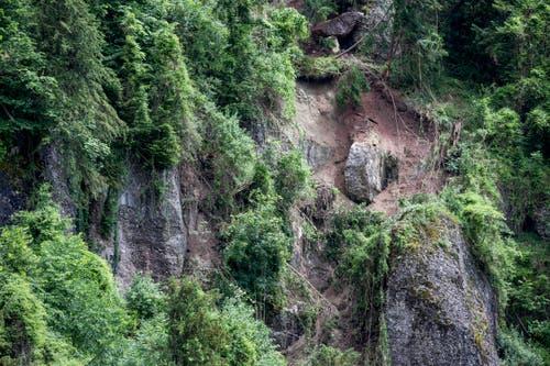 Der Abbruchort wird nun von Geologen und Experten des Kantons Luzern untersucht. (Bild: Keystone / Alexandra Wey)