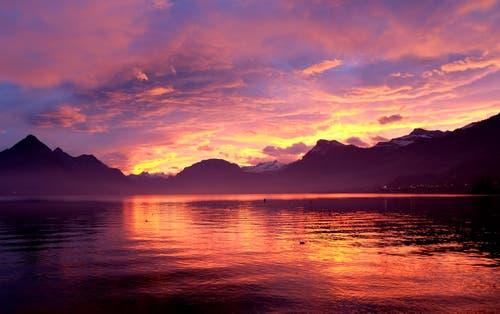 Ein unglaubliches Morgenrot verzauberte heute früh die Landschaft bei Ennetbürgen (Bild: Sepp Bernasconi)