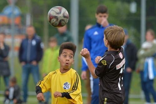 Junioren des FC Lugano und des FCL Löwenschule. (Bild: Martin Meienberger)