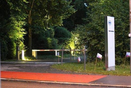 In Buonas (Gemeinde Risch) endete ein Firmenfest tragisch. Ein Baum stürzte auf zwei Personen und begrub diese unter sich. (Bild: Neue ZZ)
