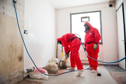Bevor die Gebäude abgerissen werden konnten, mussten Arbeiter den Asbest abtragen. (Bild: Boris Bürgisser / Neue LZ)