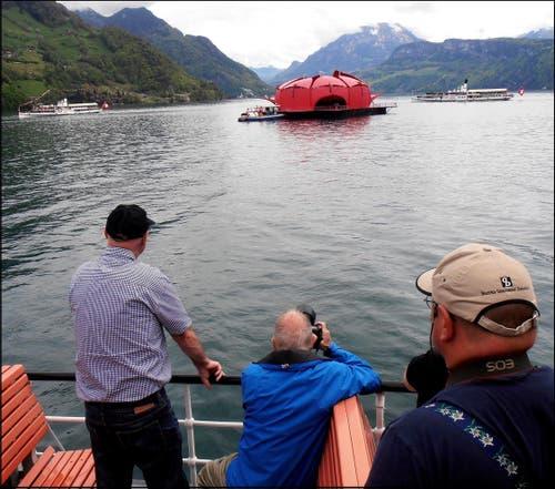 Die Seerose wird gebührend bewundert und von sämtlichen Dampfschiffen umrundet. (Bild: Leserbild: Sepp Bernasconi)