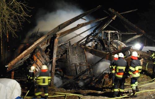 «22 Kühe und 2 Kälber kamen in den Flammen um», sagt Martin Limacher, Kommandant der Feuerwehr Malters-Schachen, auf Anfrage. (Bild: Luzerner Polizei)