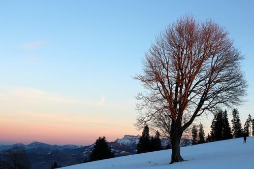 Pilatus und Rigi grüssen zum Napf, bei Sonnenuntergang. (Bild: Josef Habermacher)